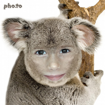 Fotomontajes online divertidos